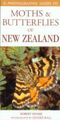A Photographic Guide to Moths & Butterflies of New Zealand