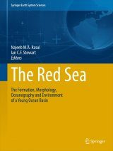 The Red Sea Image