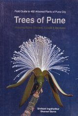 Trees of Pune