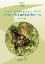 A Key to the Major Groups of British Terrestrial Invertebrates Image