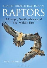 Flight Identification of Raptors of Europe, North Africa and the Middle East Image