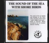The Sound of the Sea with Shore Birds