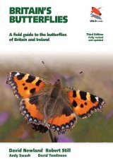 Britain's Butterflies Image
