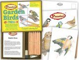 Garden Birds Colouring Set