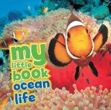 My Little Book of Ocean Life