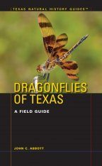 Dragonflies of Texas Image