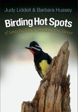 Birding Hot Spots of Santa Fe, Taos, & Northern New Mexico