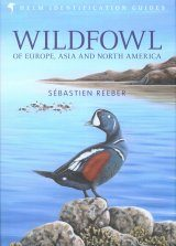 Wildfowl of Europe, Asia and North America Image
