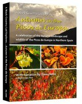 Autumn in the Picos de Europa (Region 2)