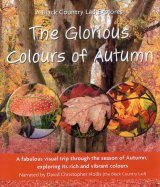 The Glorious Colours of Autumn (Region B)