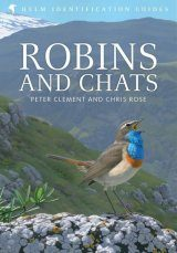 Robins and Chats Image