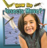 How Do Insects Move?