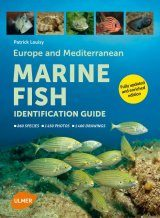 Europe and Mediterranean Marine Fish Identification Guide