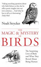 The Magic & Mystery of Birds