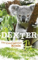 Dexter: The Courageous Koala