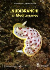 Nudibranchi del Mediterraneo [Nudibranchs of the Mediterranean]