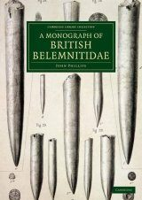 A Monograph of British Belemnitidae