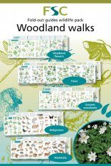 FSC Wildlife Pack 3: Woodland Walks