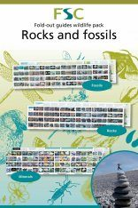 FSC Wildlife Pack 30: Rocks & Fossils