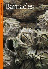 Barnacles: A Museum Victoria Field Guide to Marine Life Image
