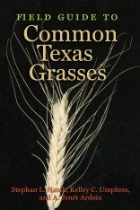 Field Guide to Common Texas Grasses Image