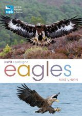 RSPB Spotlight: Eagles Image