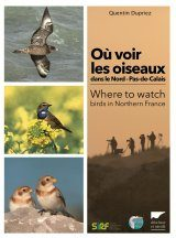 Where to Watch Birds in Northern France / Où Voir les Oiseaux dans le Nord–Pas-de-Calais