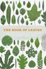 The Book of Leaves Image