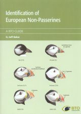 Identification of European Non-Passerines Image