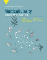 Multicellularity: Origins and Evolution Image