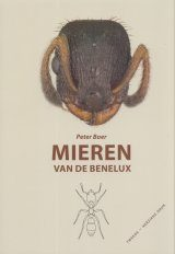 Mieren van de Benelux [Ants of the Benelux]