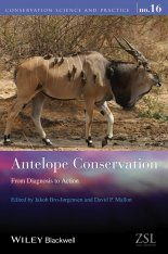 Antelope Conservation Image