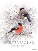 Vinterfåglar [Winter Birds]