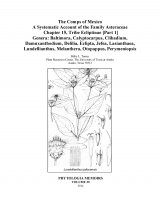The Comps of Mexico: A Systematic Account of the Family Asteraceae, Chapter 15