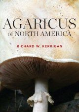 Agaricus of North America