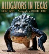 Alligators of Texas Image