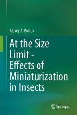 At the Size Limit – Effects of Miniaturization in Insects