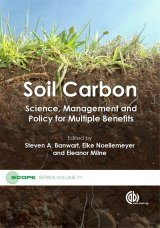 Soil Carbon Image