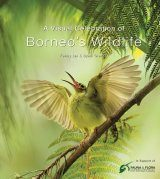 A Visual Celebration of Borneo's Wildlife