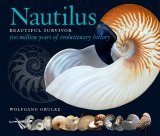Nautilus: Beautiful Survivor
