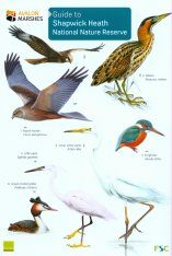 Guide to Shapwick Heath National Nature Reserve Image