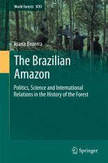 The Brazilian Amazon Image