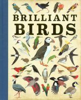 Brilliant Birds