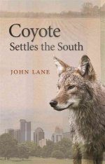 Coyote Settles the South Image