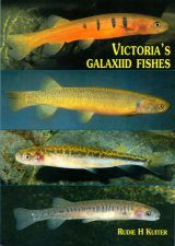 Victoria's Galaxiid Fishes