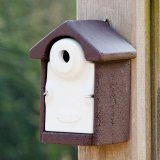 Vivara Pro Seville 28mm WoodStone Nest Box
