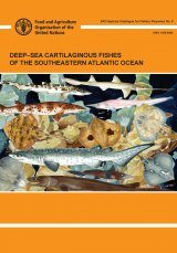 Deep-Sea Cartilaginous Fishes of the Southeastern Atlantic Ocean Image