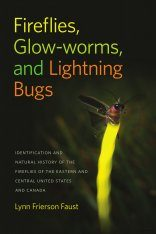 Fireflies, Glow-Worms, and Lightning Bugs Image