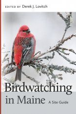 Birdwatching in Maine