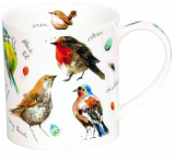 Garden Birds Field Guide Mug